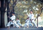 Différence entre le karaté et le kung-fu